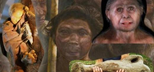 human-origins-2013