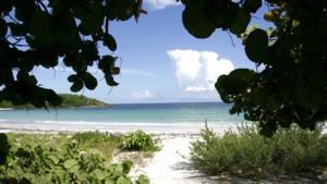 beach-la-plata