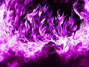 7-violet-purple-flames-tm-1-500_orig