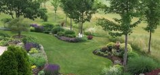 659be01c57782596f54c8e965aa5f9d2--hill-landscaping-berm-landscaping-ideas