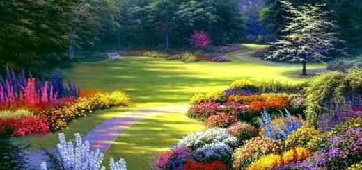 2582-kwiaty-w-plenerze